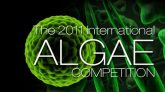 The 2011 International Algae Competition